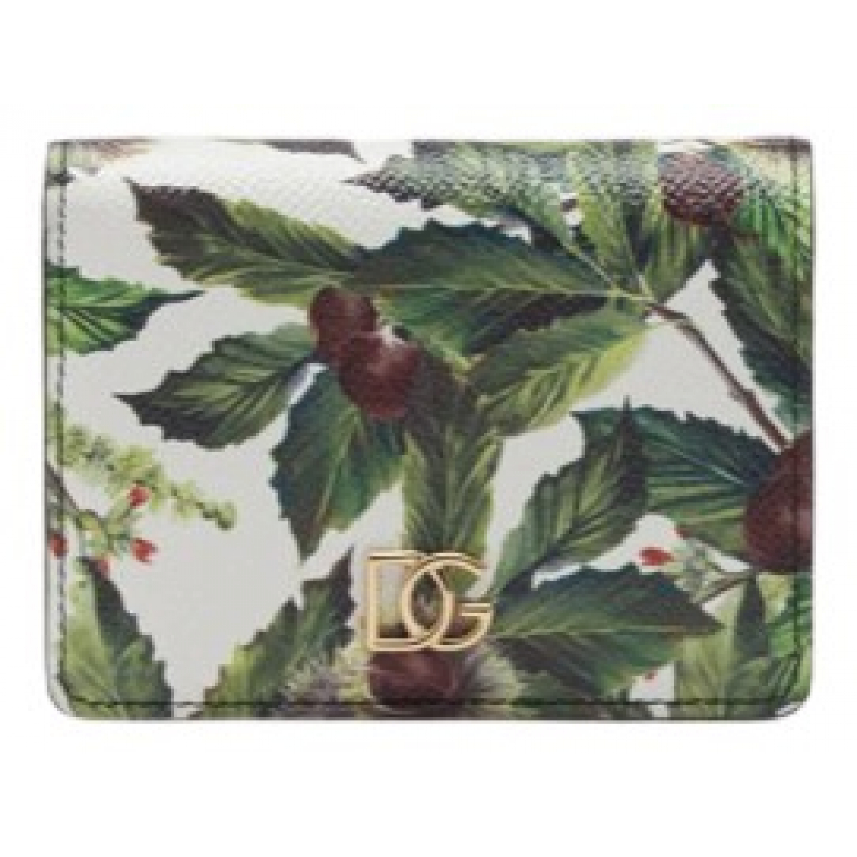 Dolce & Gabbana N Green Leather Purses, wallet & cases for Women N