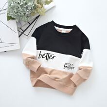 Toddler Boys Cut And Sew Letter Graphic Sweatshirt