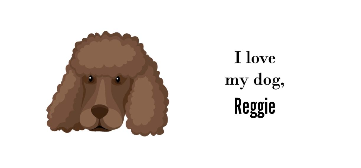 Pets + Animals 20 oz. Mug, Gift -Poodle Shaved