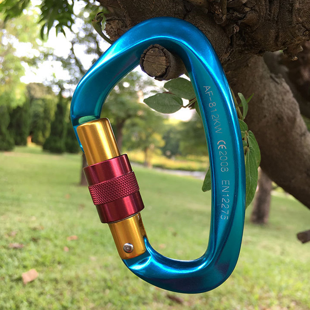 Mountaineering Buckle Main Lock Outdoor Aviation Aluminum Camping Hammock Type D Buckle Backrope Climbing Safety Buckle