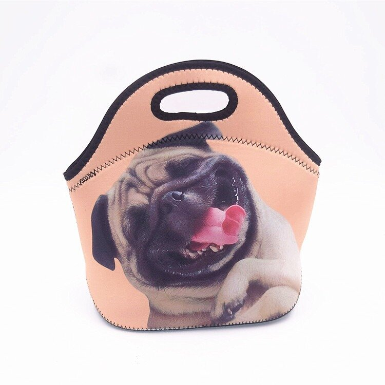Lunch Bags Insulated for Women Men Adult Neoprene Cute Tote Waterproof Thermal Reusable Durable Box