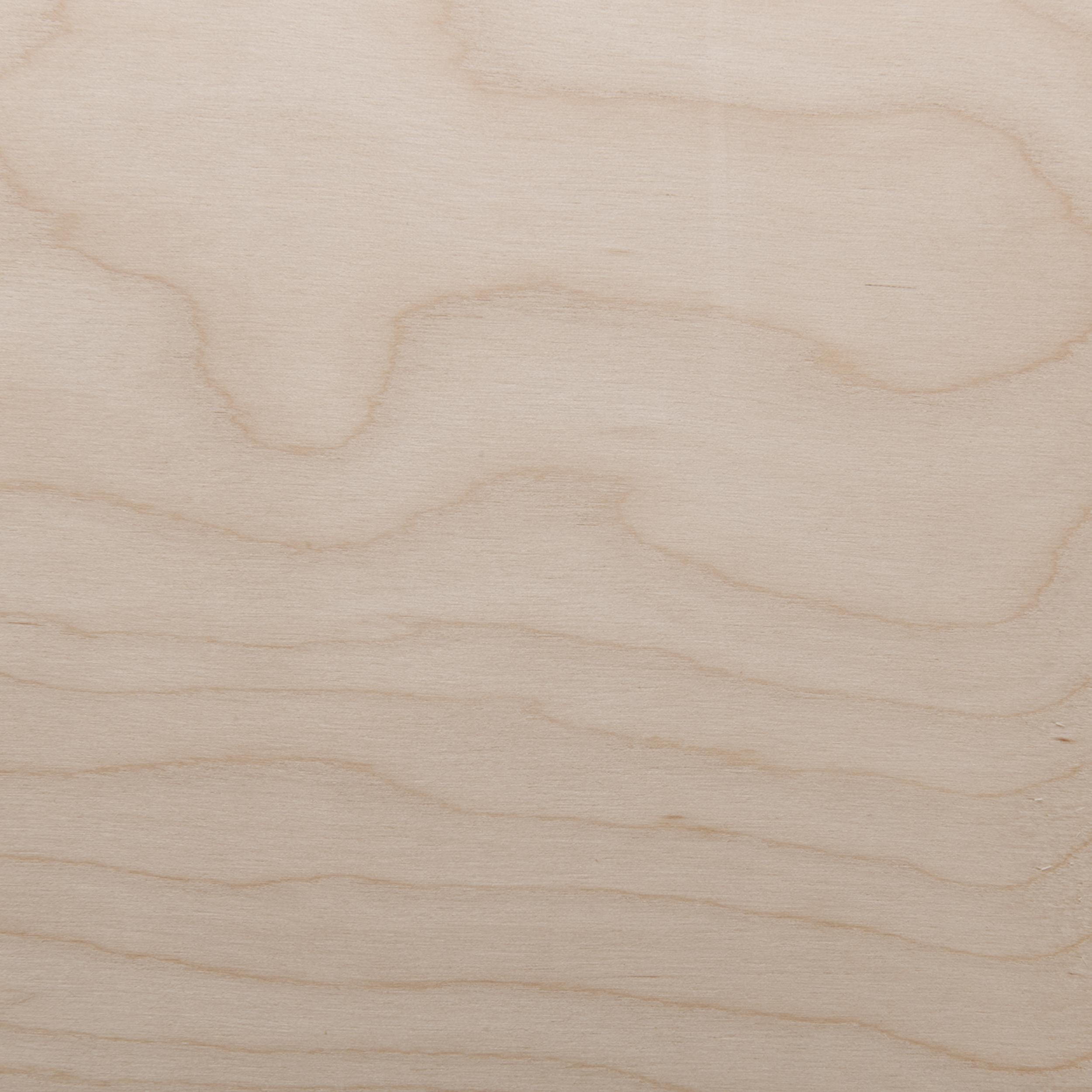 White Birch Veneer Sheet Rotary Cut Whole Piece 4' x 8' 2-Ply Wood on Wood