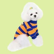 Colorblock Striped Dog Sweater