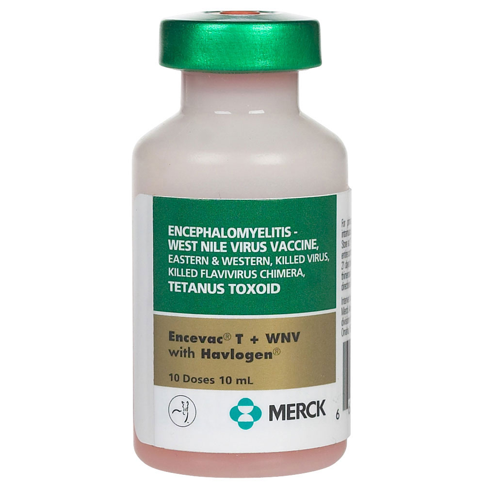 Encevac T + WNV (10 Doses)