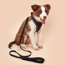 1pc Simple Dog Harness & 1pc Dog Leash