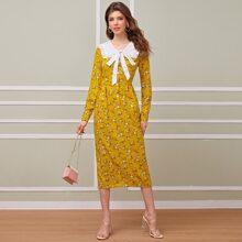 Kleid mit Halsband, Rueschenbesatz, Knopfen vorn und Falten Detail