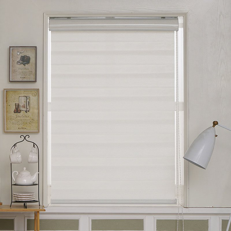 Dual Layer Roller Sheer Shades Blinds Light Filtering Window Treatments