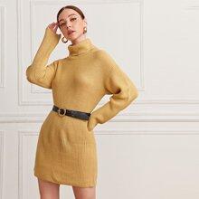 Turtleneck Drop Shoulder Solid Sweater Dress Without Belt