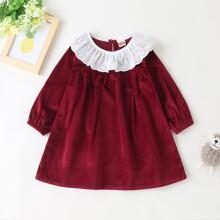 Baby Girl Eyelet Embroidery Ruffle Velvet Smock Dress