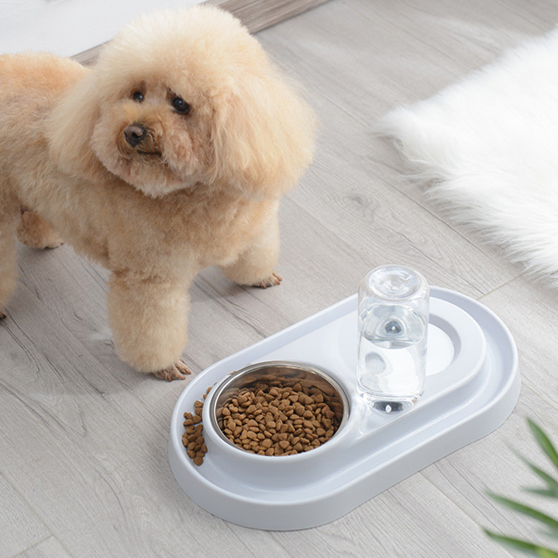 Pet Ring Automatic Water Continuous Double Bowl Stainless Steel Rice Bowl Basin Cat Dog Universal