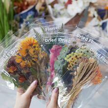 6sheets Plant Sticker