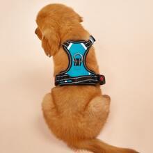 1 Stueck Autosicherheit Hundegurt