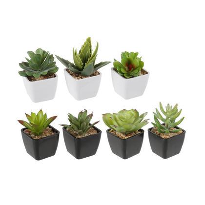 Plantes Succulentes Artificielles en Plastique Dans des Mini Pots en Plastique, Style Aléatoire, 1Pc