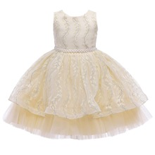 Girls Embroidery Mesh Pearls Gown Dress
