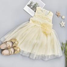 Toddler Girls Appliques Contrast Mesh Bow Back Tutu Dress