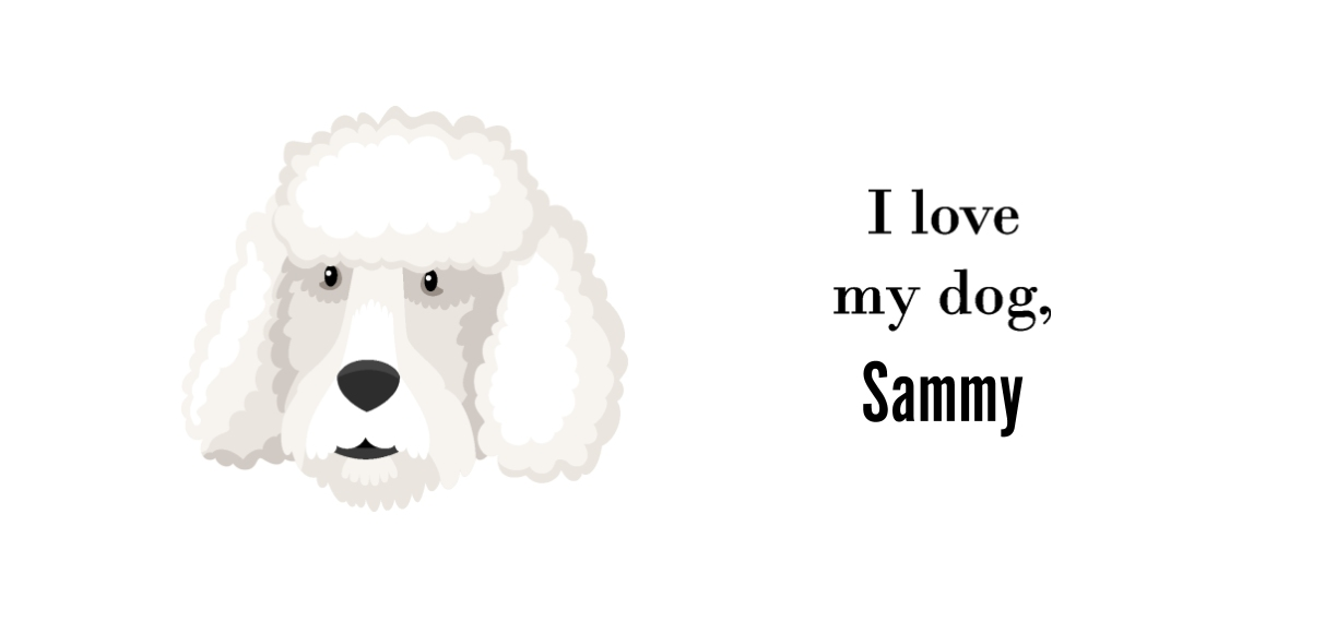 Pets + Animals 20 oz. Mug, Gift -Poodle