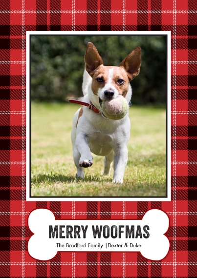 Christmas Photo Cards 5x7 Cards, Premium Cardstock 120lb with Rounded Corners, Card & Stationery -Christmas Plaid Woofmas by Tumbalina