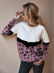 Colorblock And Graphic Pattern Sweater