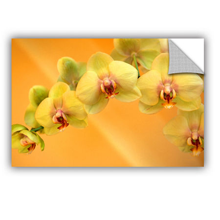 Brushstone Yellow Phalaenopsis Removable Wall Decal, One Size , Yellow