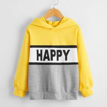 Boys Letter Graphic Colorblock Hooded Sweatshirt