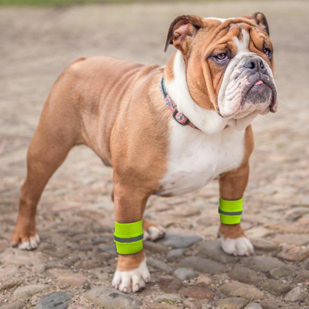 2pcs Reflective Safety Wrist Band For Dog Pets Safety Leg Wraps