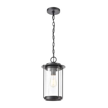 46662/1 Devonshire 1-Light Hanging in Matte Black with Seedy