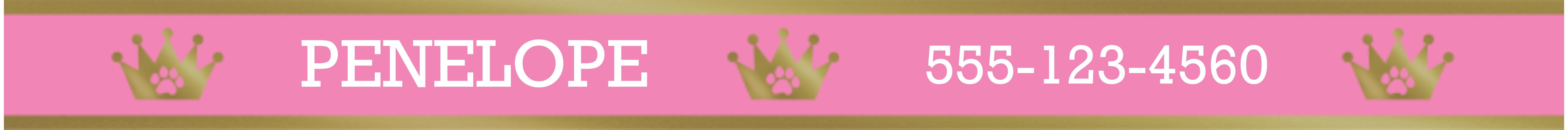 Featured Small Pet Collar, Gift -Royalty Pink