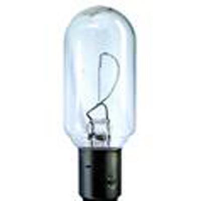 Hella T8 Incandescent Bulb - 3488131