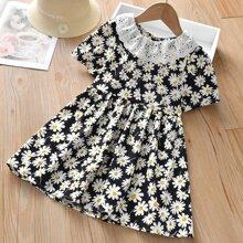 Toddler Girls Allover Floral Schiffy Trim Dress