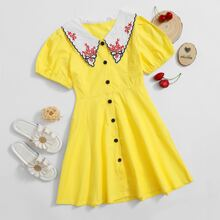 Toddler Girls Floral Embroidered Contrast Collar A-line Dress