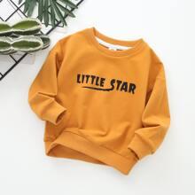Toddler Boys Letter Graphic Drop Shoulder Sweatshirt