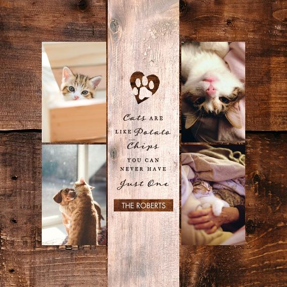Pet Framed Canvas Print, Chocolate, 12x12, Home Décor -The Good Kitty