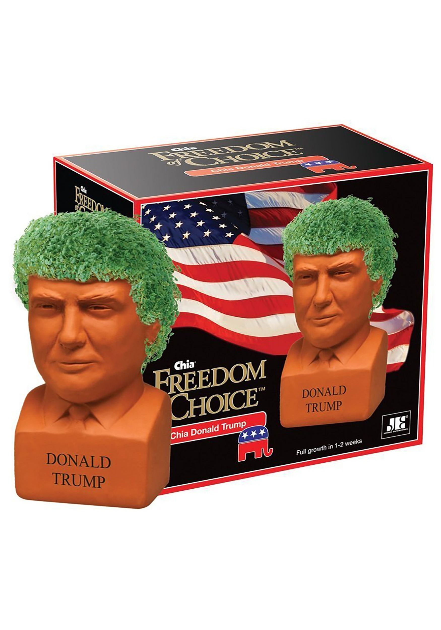 Chia Pet Donald Trump