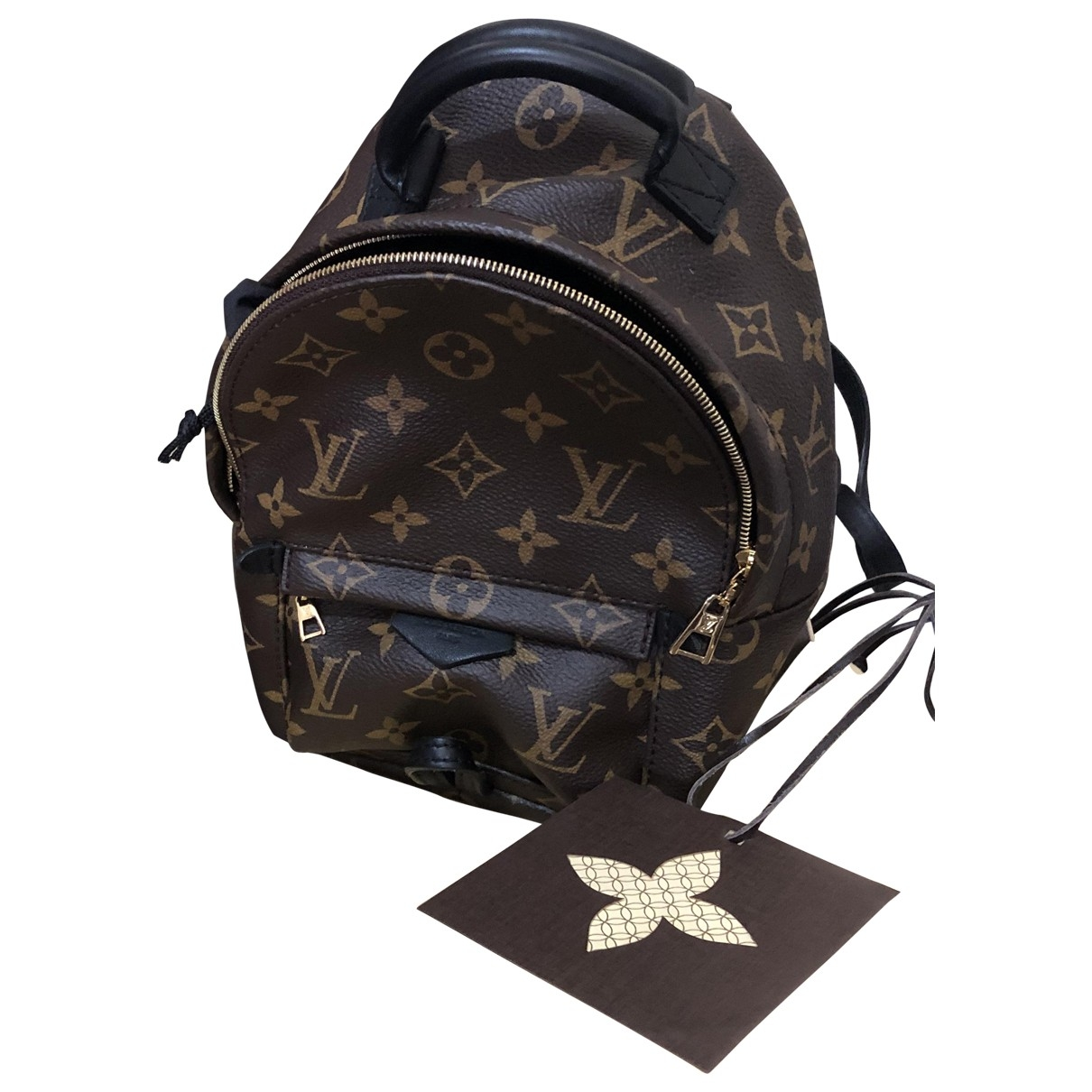 Louis Vuitton Palm Springs Brown Cloth backpack for Women \N