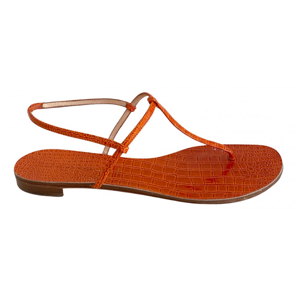 Casadei \N Mokassins in  Orange Leder