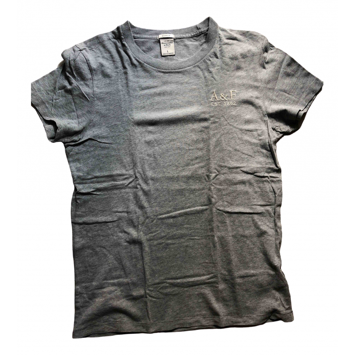 Abercrombie & Fitch N Grey Cotton T-shirts for Men L International