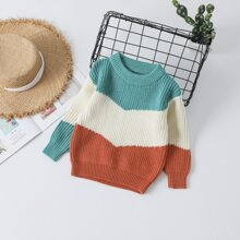 Toddler Girls Colorblock Ribbed Knit Sweater