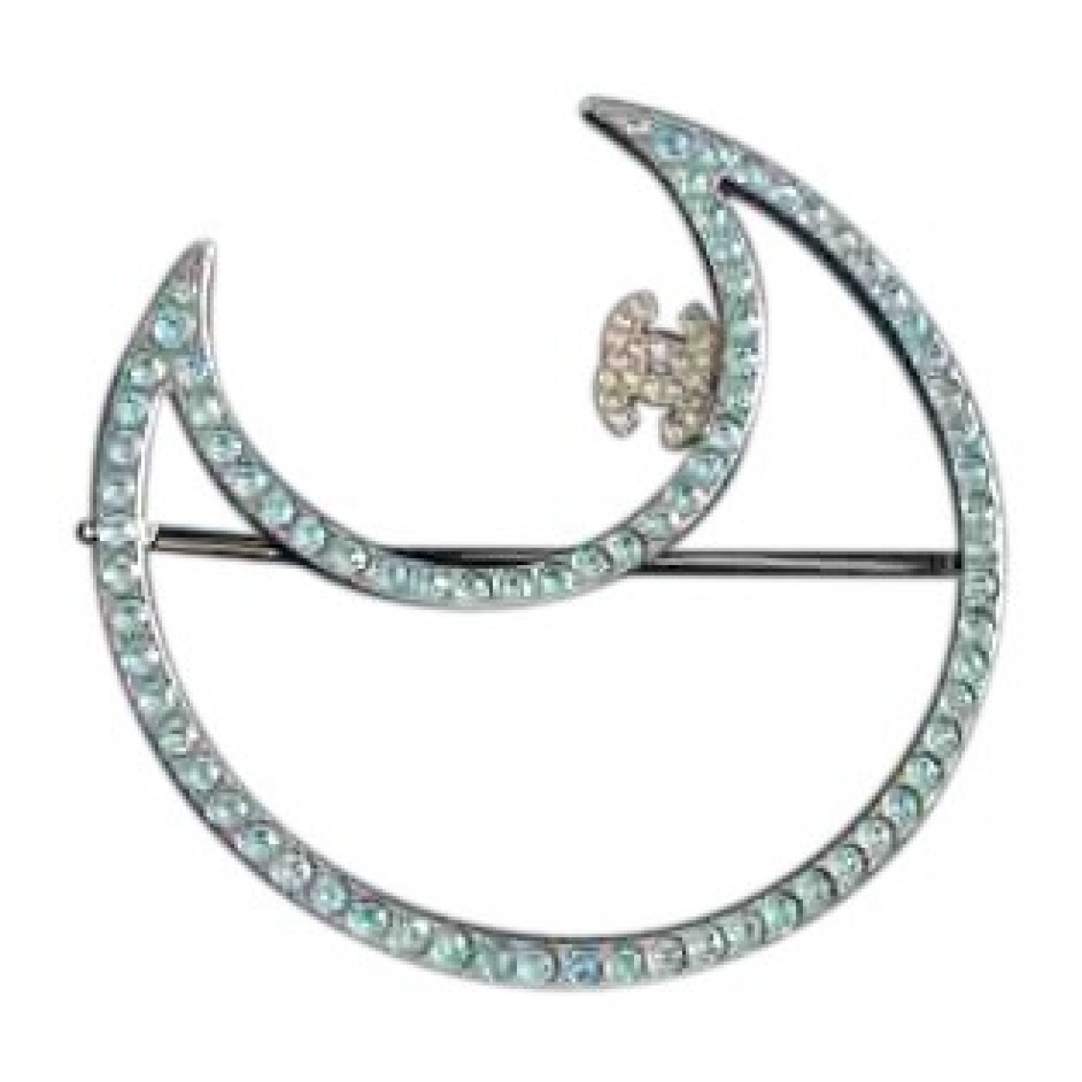 Chanel \N Silver Metal Pins & brooches for Women \N