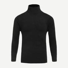 Men Turtleneck Solid Sweater