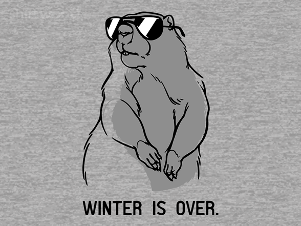Winter Is Over T Shirt