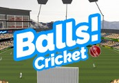 Balls! Virtual Reality Cricket Steam CD Key