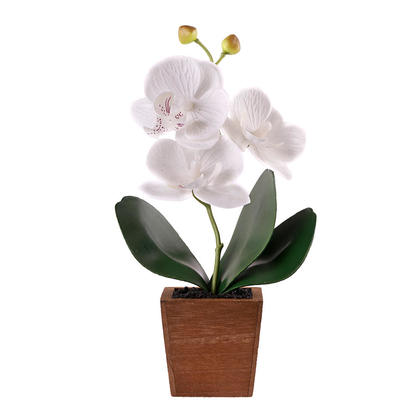Decorative Artificial Flower Butterfly Orchid in Wood Pot, White - LIVINGbasics™