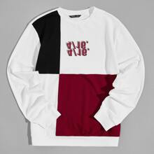 Men Letter Graphic Colorblock Pullover