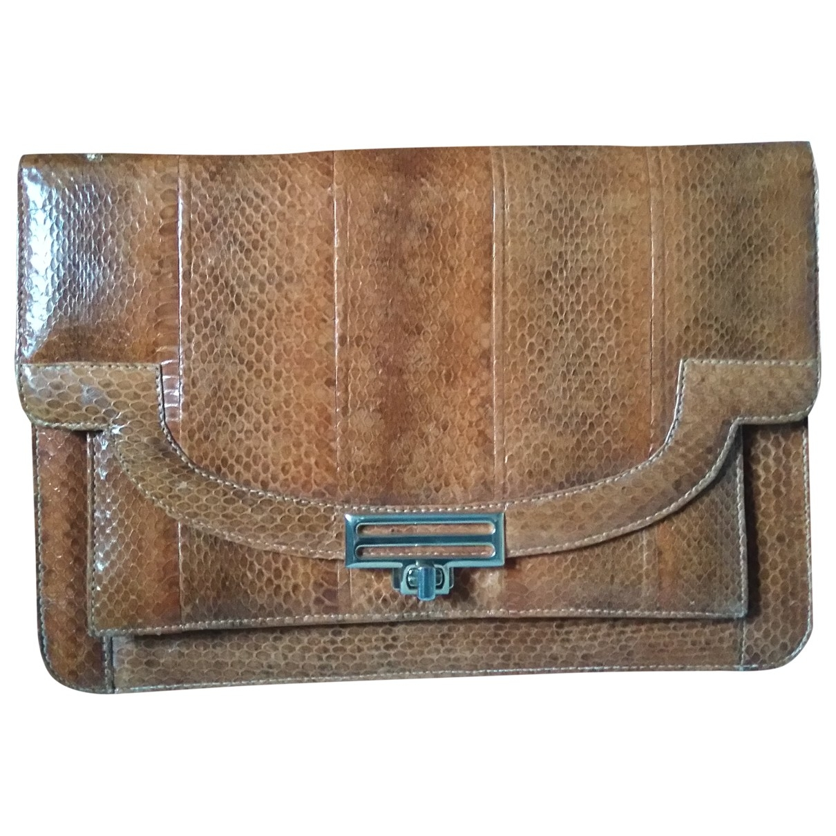 Non Signé / Unsigned \N Brown Water snake handbag for Women \N
