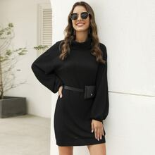 Solid High Neck Sweater Dress Without Bag