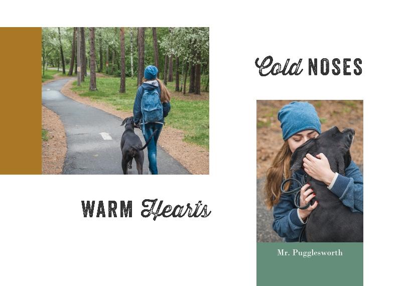 Pet Canvas Print, 20x30, Home Décor -Pampered Pets