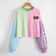 Drop Shoulder Letter Graphic Colorblock Pullover