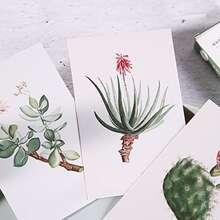 30sheets Plant Print Postcard
