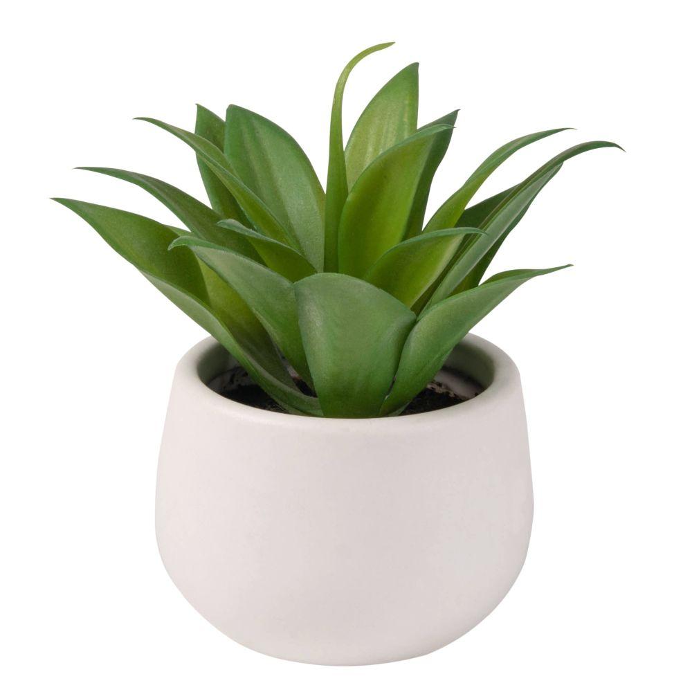 Kuenstliche Aloe Vera im weissen Keramikuebertopf
