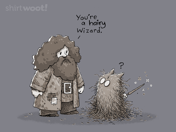 You're A Hairy Wizard T Shirt